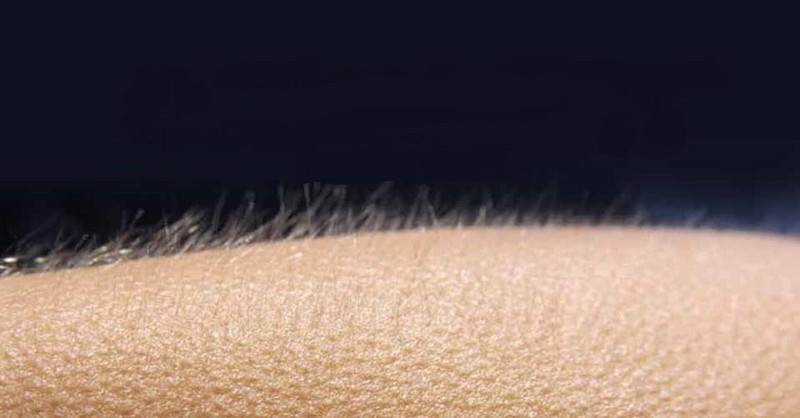 Čo to znamená, keď nám pri počúvaní hudby naskakuje husia koža?