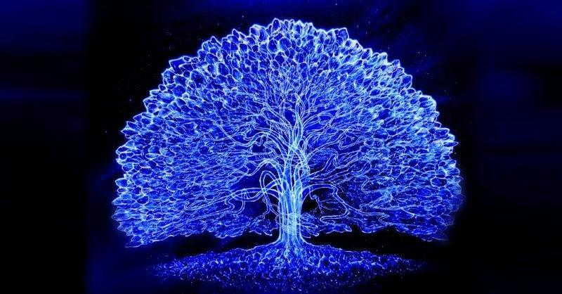 Význam stromu života z pohľadu 5 starovekých civilizácií