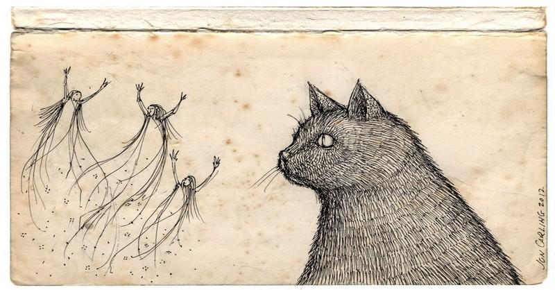 Naozaj vidia duchov? Výskum potvrdzuje, že mačky a psy vidia frekvencie, ktoré my nevidíme
