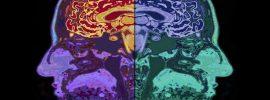 Odlišnú stavbu mozgu a jeho lepšiu výkonnosť u ľudí, ktorí sa pravidelne venujú meditácii znova potvrdil ďalší z mnohých výskumov