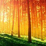 Päť úžasných vlastností slnečného svetla, o ktorých ste doteraz nepočuli