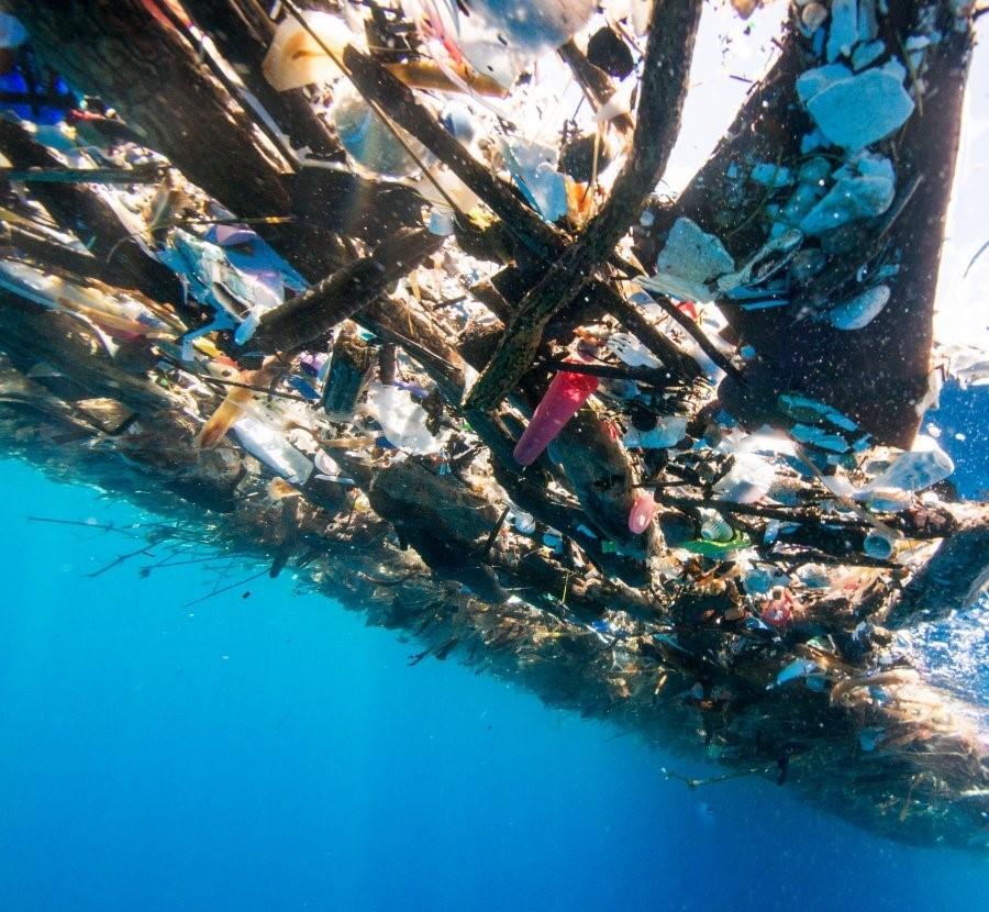 V Karibskom mori objavili niekoľko míľ dlhé zhluky plastového odpadu. Jeho prítomnosť má za následok vymieranie morských živočíchov