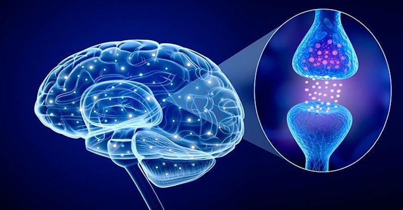 11 prirodzených spôsobov, ako si zvýšiť hladinu sérotonínu v mozgu